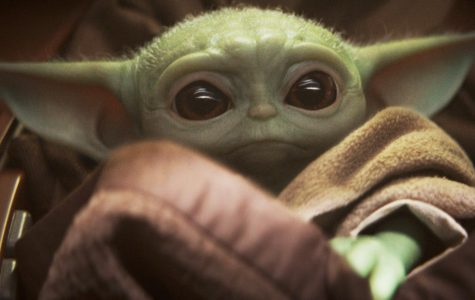 Baby Yoda Takes the Galaxy (and LHS) By Storm (SPOILER ALERT)
